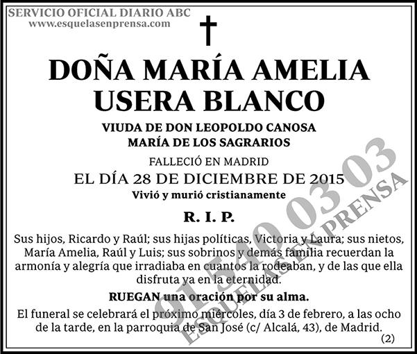María Amelia Usera Blanco